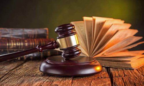 İzmir İdare Hukuku Avukatı İdil Su Aydın